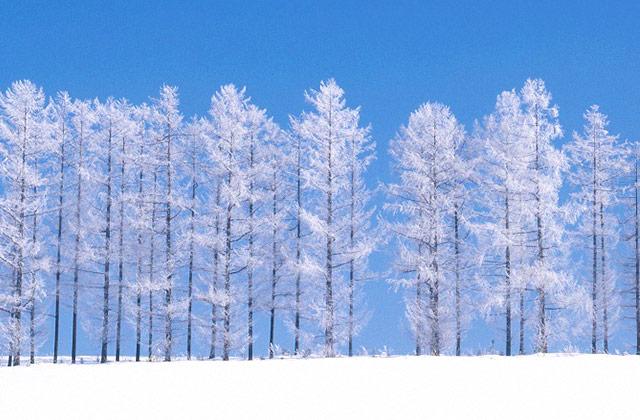 추워서 매력적인 여행지 5의 썸네일 이미지