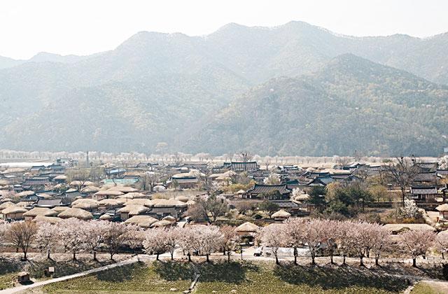 지방 소도시 여행 : 안동 1. 맛과 멋의 도시, 젊음이 있는 안동의 썸네일 이미지