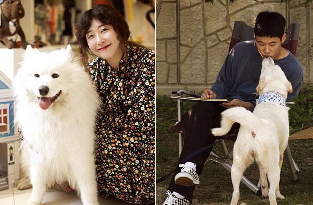 반려동물과 함께 사는 사람들 3. 이자영, 김세영의 썸네일 이미지
