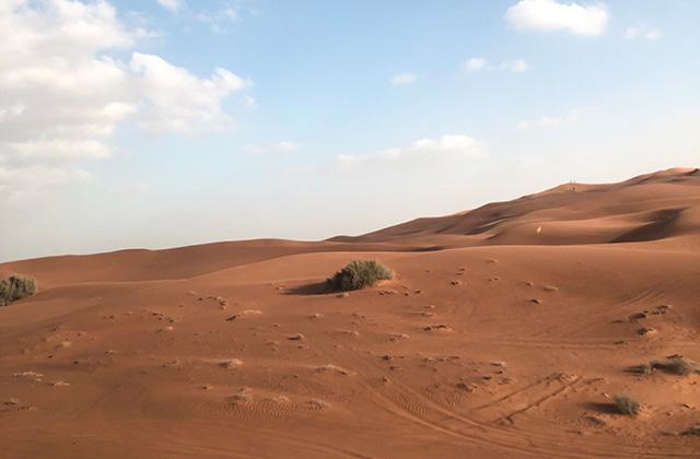 에디터C의 모리셔스 여행기 (1)의 썸네일 이미지