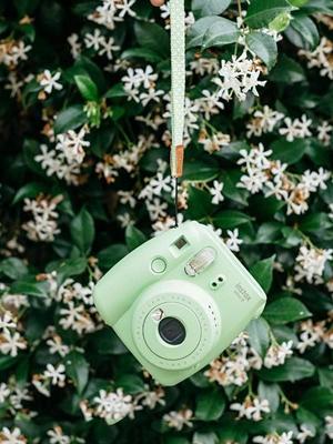 찰칵찰칵, 인증샷을 부르는 카메라