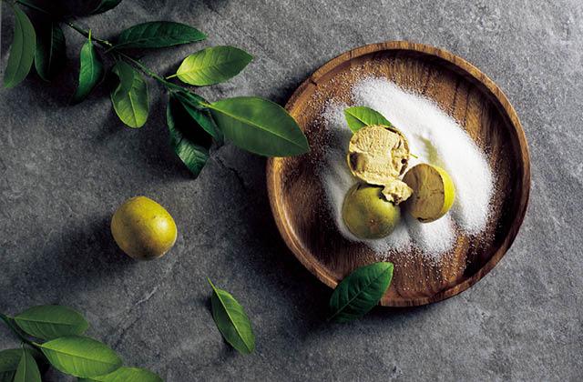 달콤한 다이어트, 설탕 대신 몽크프룻의 썸네일 이미지